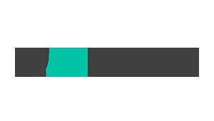 logo API Fortress